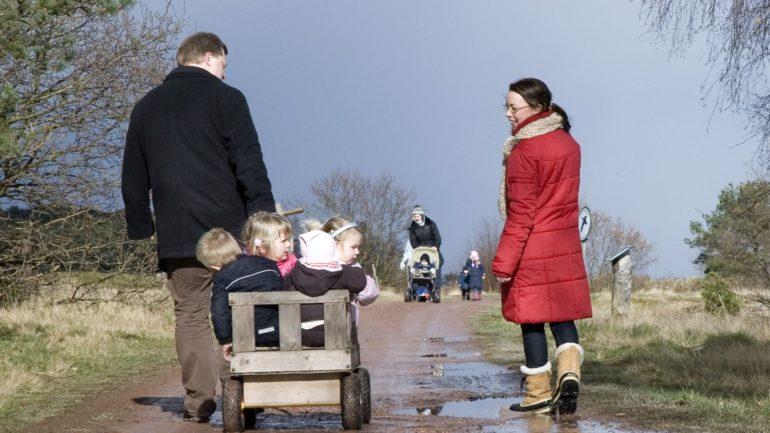 flyt til Bornholm og gå tur med børnene i trækvogn i den skønne natur