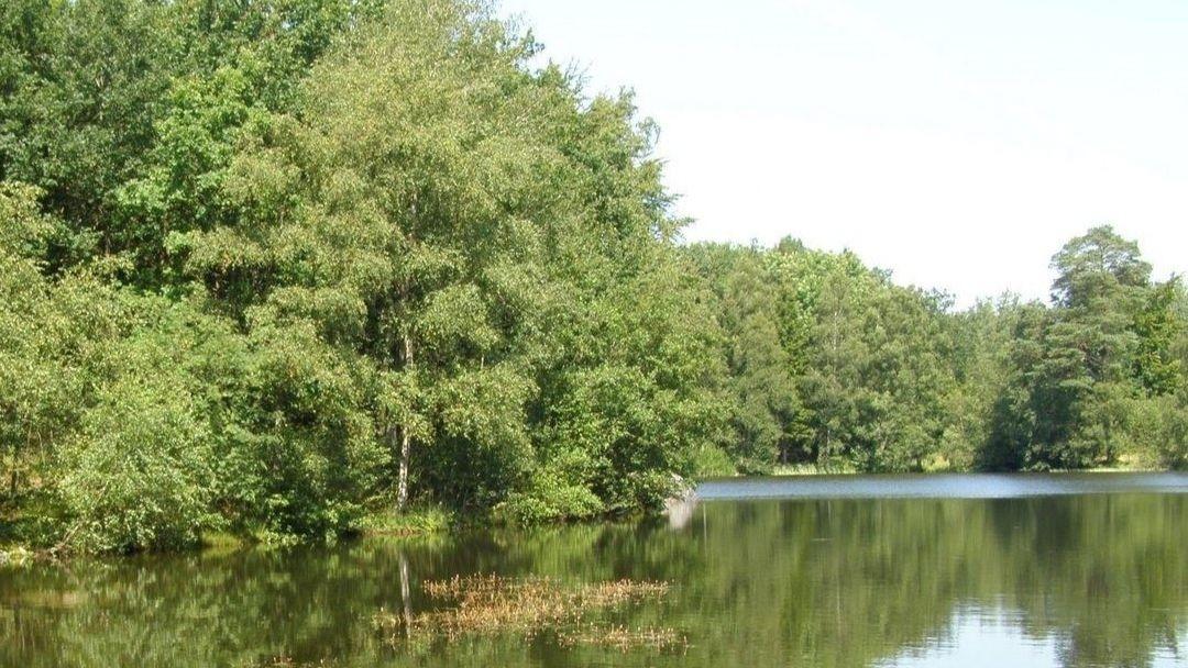 Store Grankule sø på Bornholm