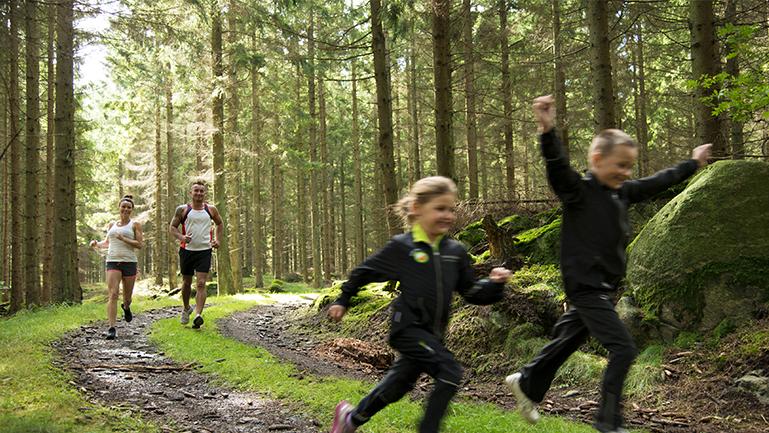 oplev Bornholms skønne natur, fx med en sheltertur ved Vang Granitbrud